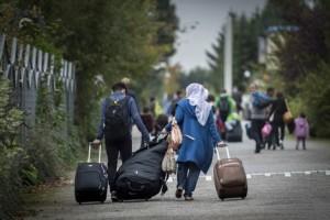Vluchtelingen in NL